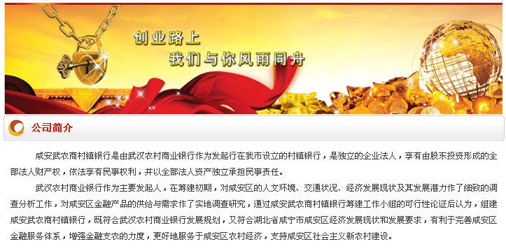 咸安武农商村镇银行招聘公告